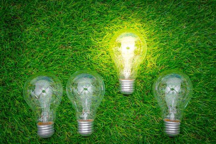 reducir-la-huella-de-carbono-energía-verde.jpg